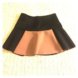 Dresses & Skirts - Zara Fit & Flare Colorblock Mini Skirt